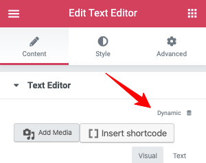 Elementor Text Editor Dynamic