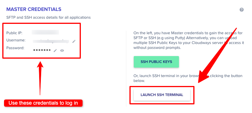 Cloudways Launch SSH Terminal